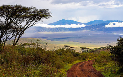 Serengeti, Ngorongoro & Zanzibar